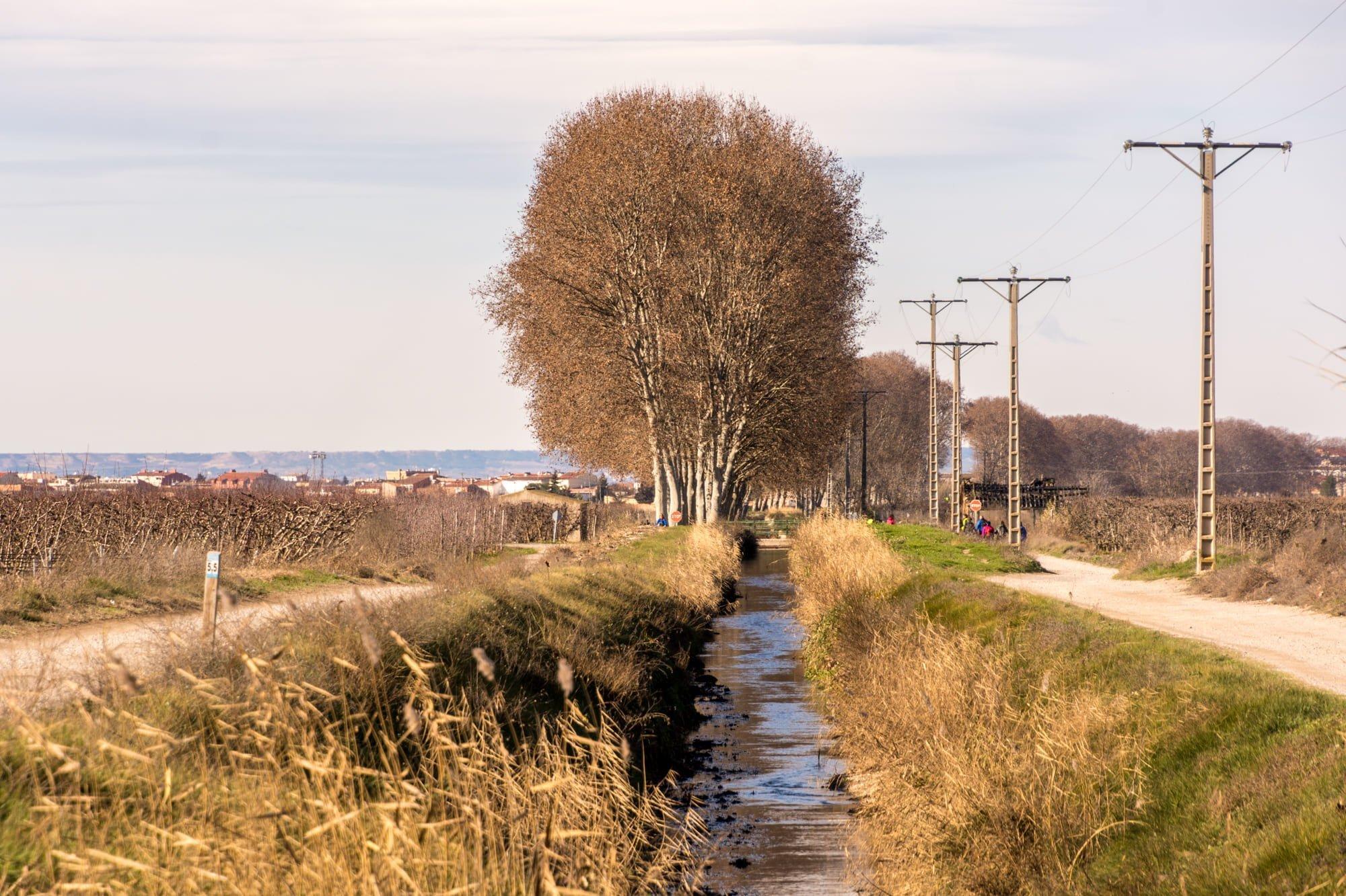 Foto del Canal d'Urgell_Foto de Ramon Oromí