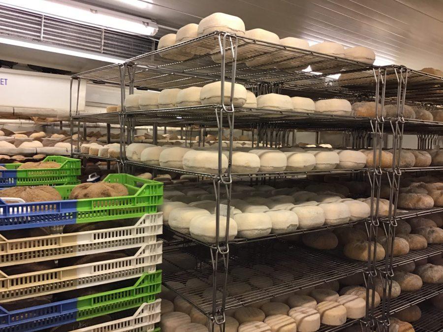 Càmera per assecar els formatges de Formatges Camps