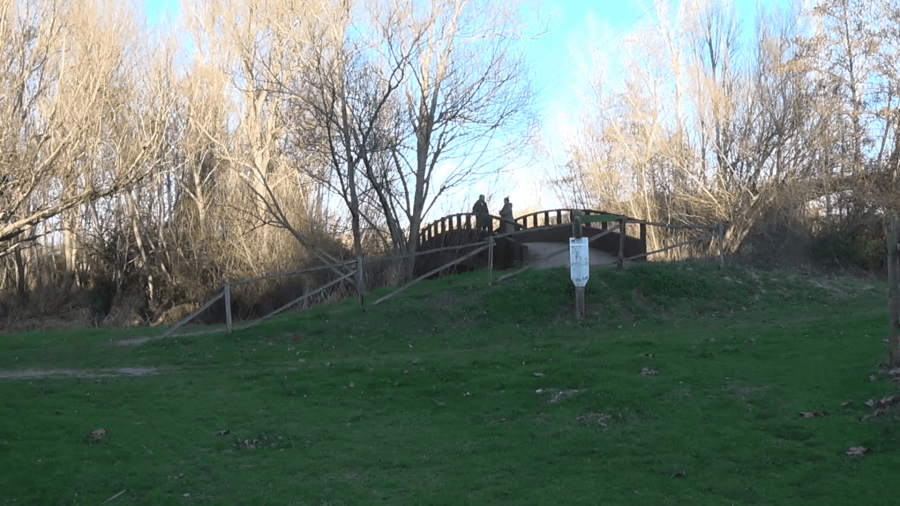 Parc del riu de Corbins