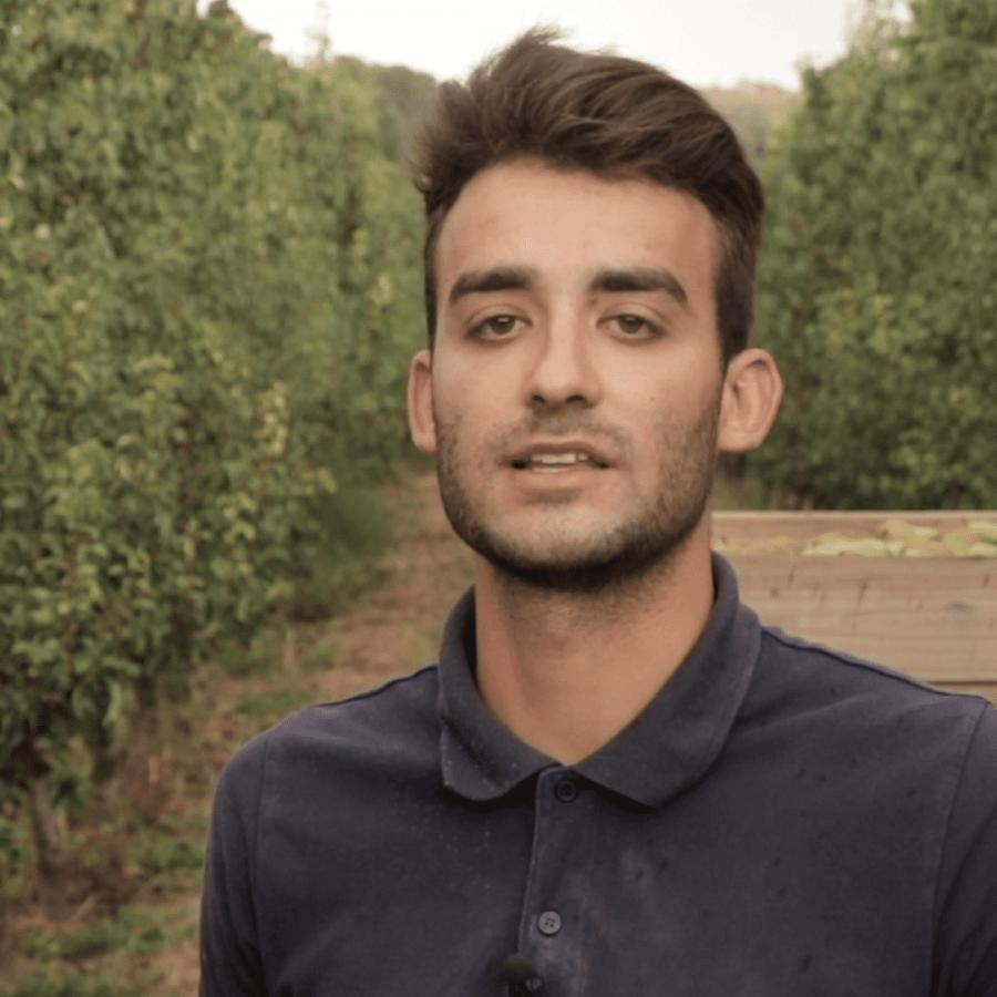 Jordi Clivillé és el pagès d'Alcoletge que protagnitza la campanya de la DOP Pera de Lleida
