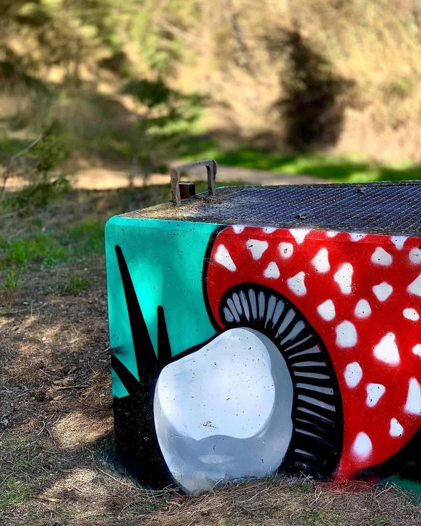 El grafiter de Corbins, Rulo, ha pintat i decorat les arquetes de l'espai de la Serreta per tal d'integrar-les en el paisatge
